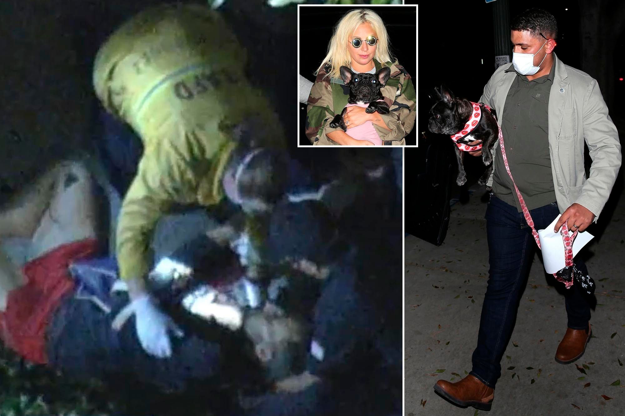 Lady Gaga's Dog Walker Shot in Hollywood