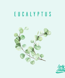 eucalyptus by lady hemp