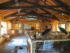 Inside the Groton Nature Center