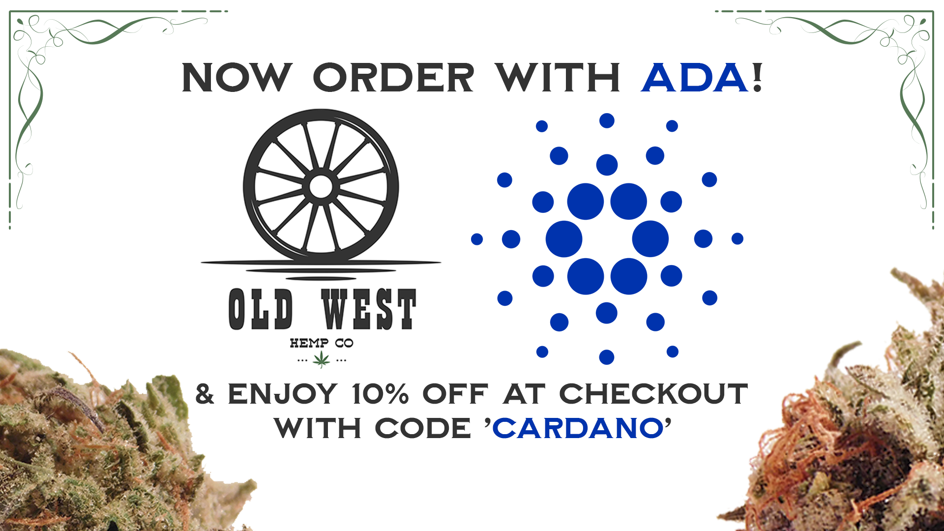 Order with Cardano