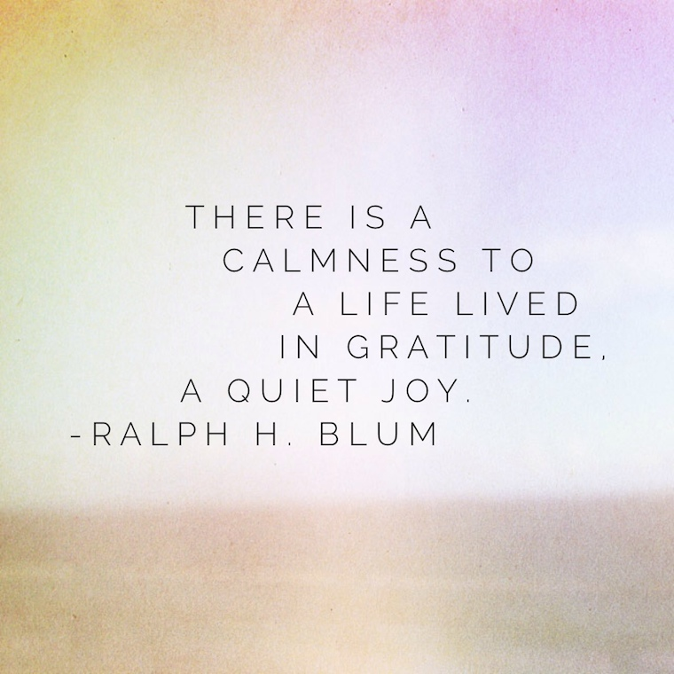 """""""There is a calmness to a life lived in gratitude, a quiet joy."""" - Ralph H. Blum"""