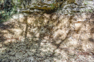Quarry near Chartres by photographer Jill K H Geoffrion