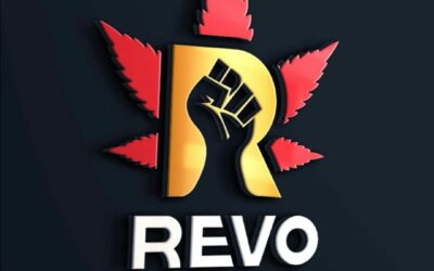 Revo Group Grand Opening Sunday August 1st! 5-8pm!