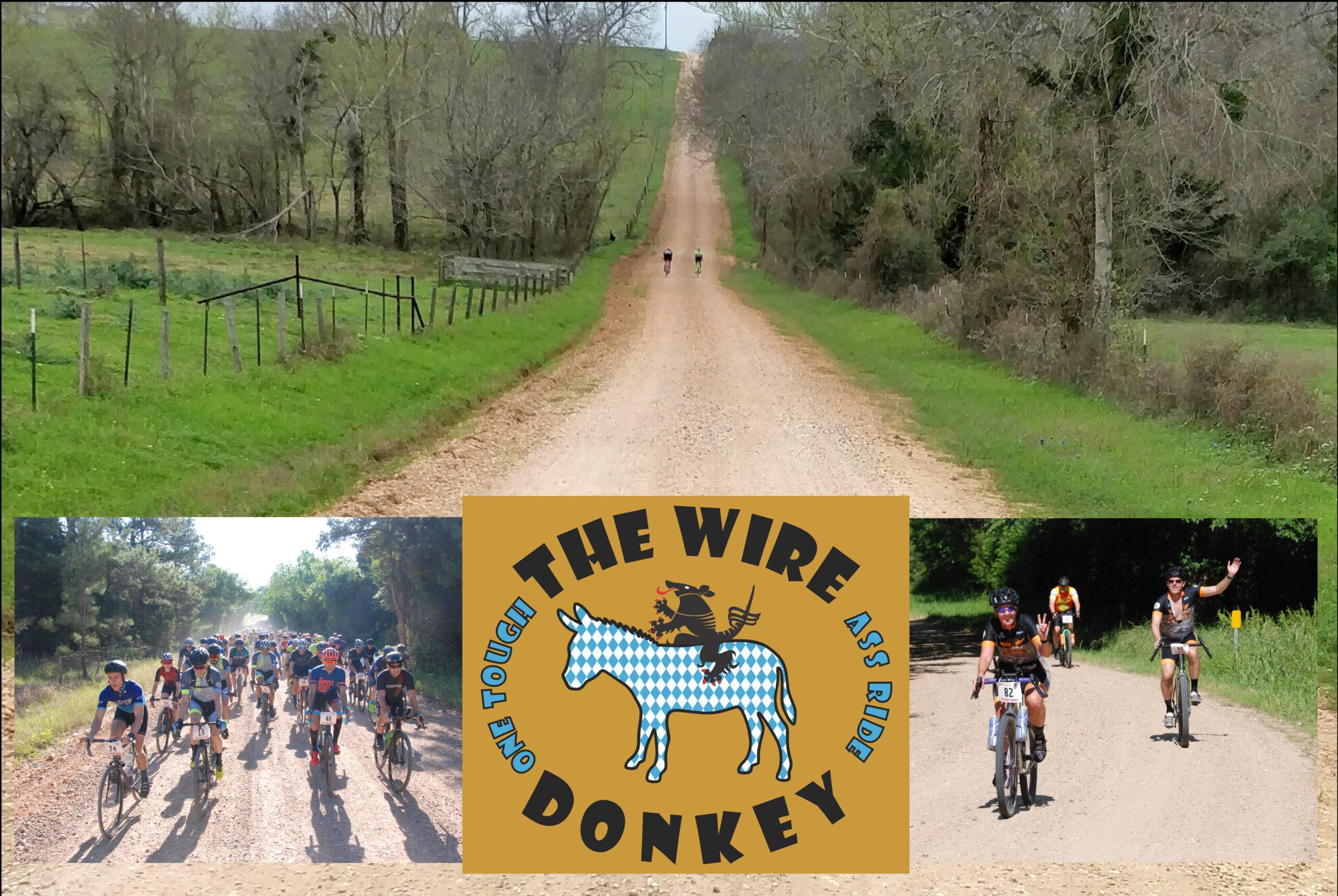 Wire Donkey Colage