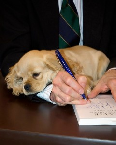 My puppy Lucy resting on my arm as I sign books