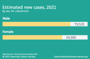 Estimated new cases 2021 by sex