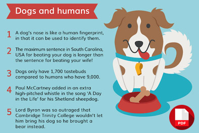 pdf facts about dogs
