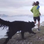 Trail Dog By Salomon Running