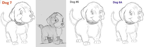 bon the shelter dog