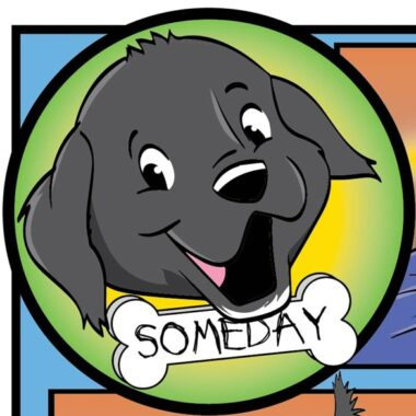 SomeDay the shelter dog