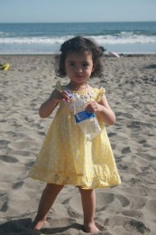 Stinson Beach 11