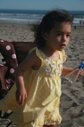 Stinson Beach 14