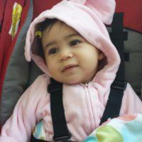 Sophia Pink Rabbit