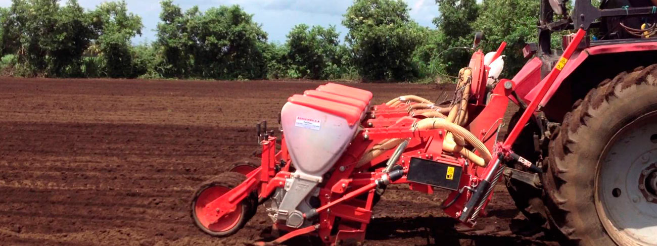 La produccion de mani ideal para la conservación de suelos