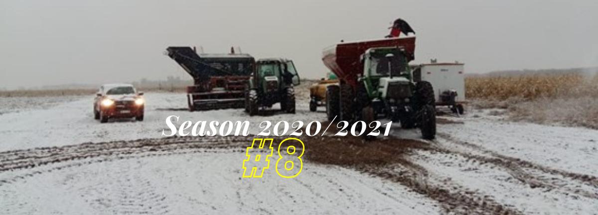 Argentine Peanut Crop Report 2020-2021 #8