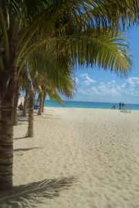 Natural Playa