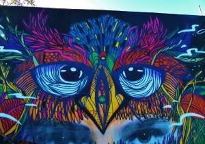 street mural of bird