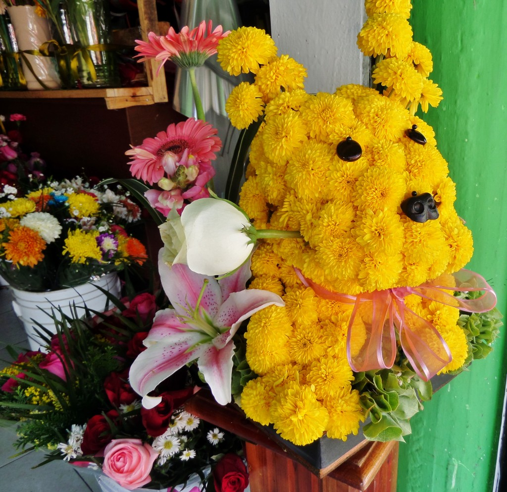 Dog made out of flowers, Playa del Carmen