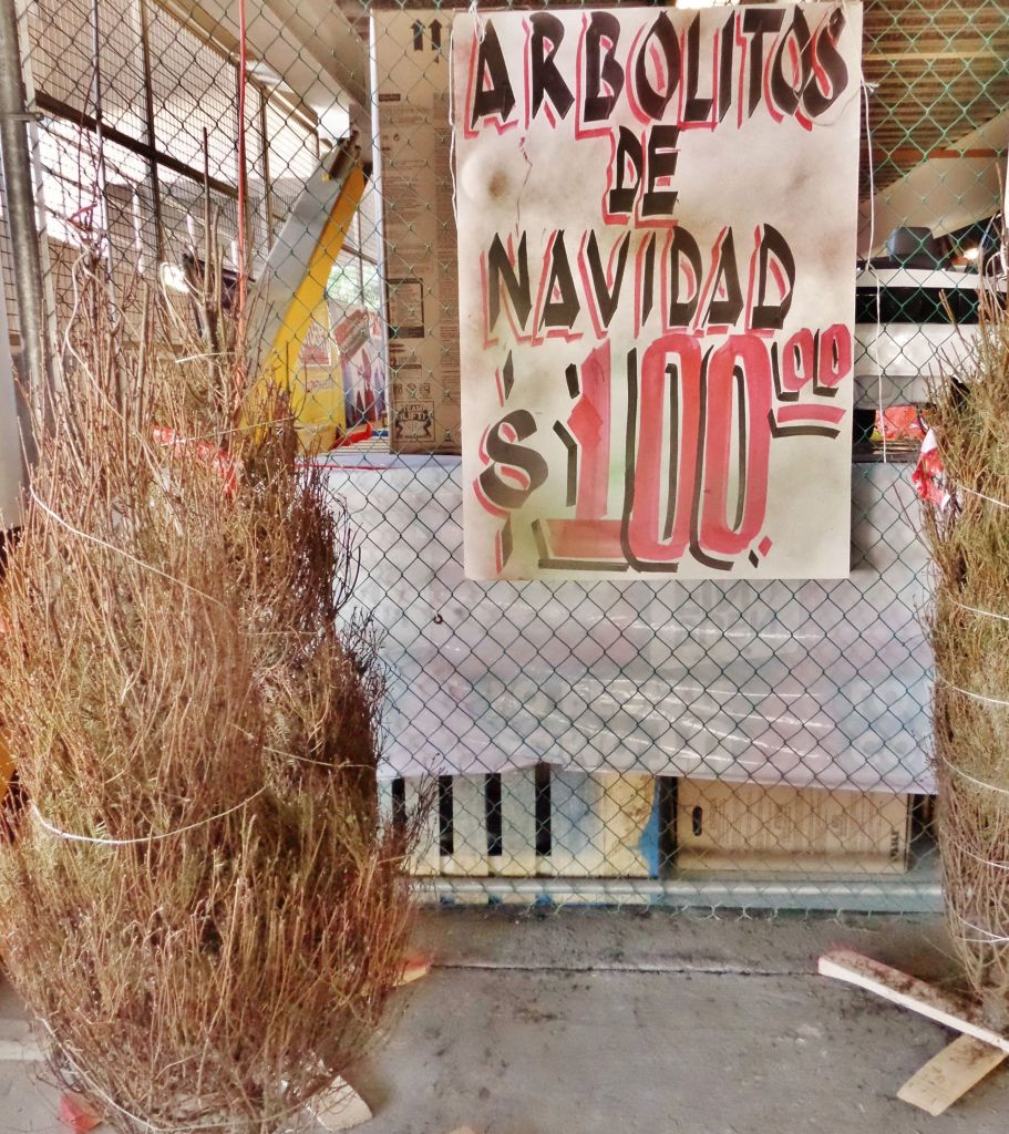 Christmas tree in Playa Del Carmen