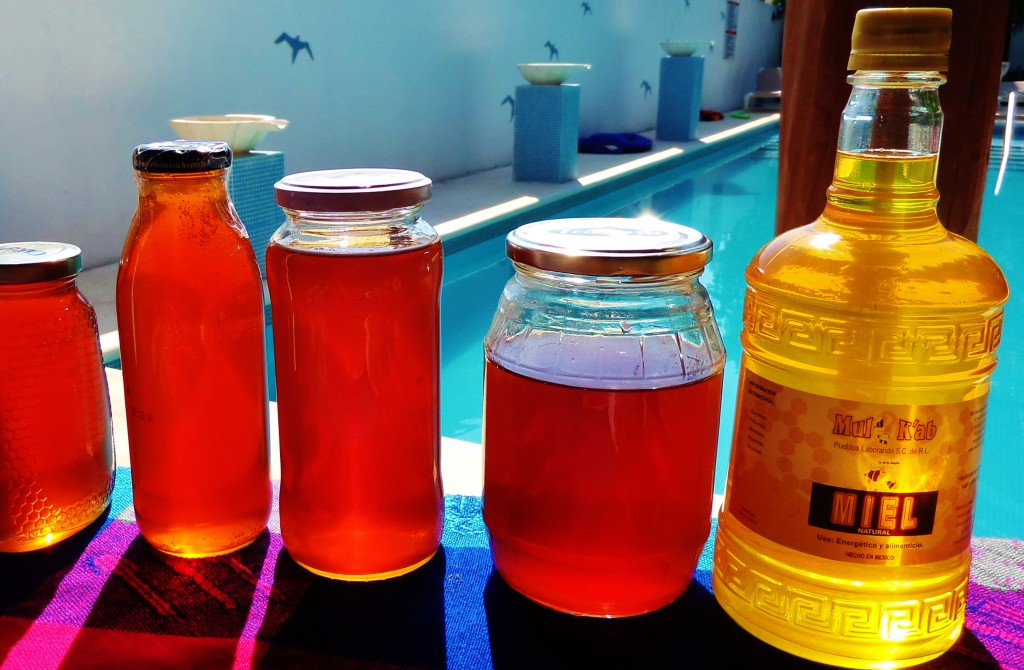 Honey, Playa del carmen, sabor a francia