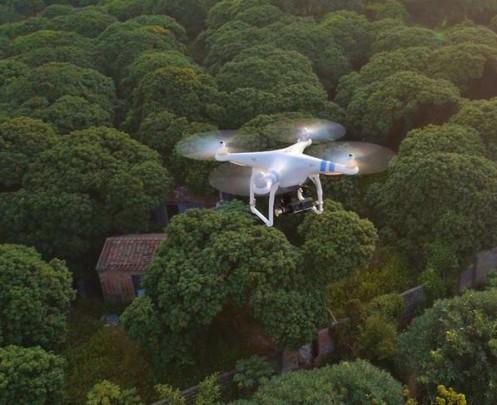 aerial drone video Playa Del Carmen