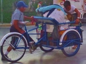 Tricycle bike