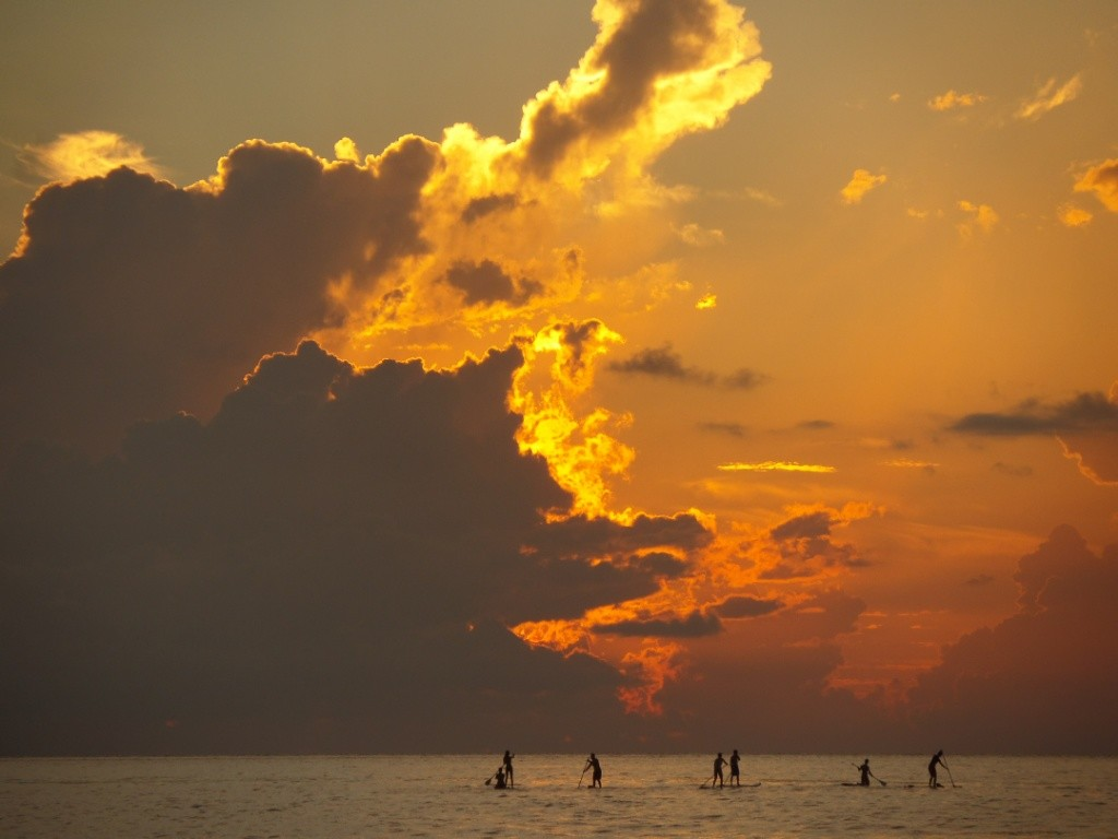 Paddle boarding Playa Del Carmen Aloha Paddle Club