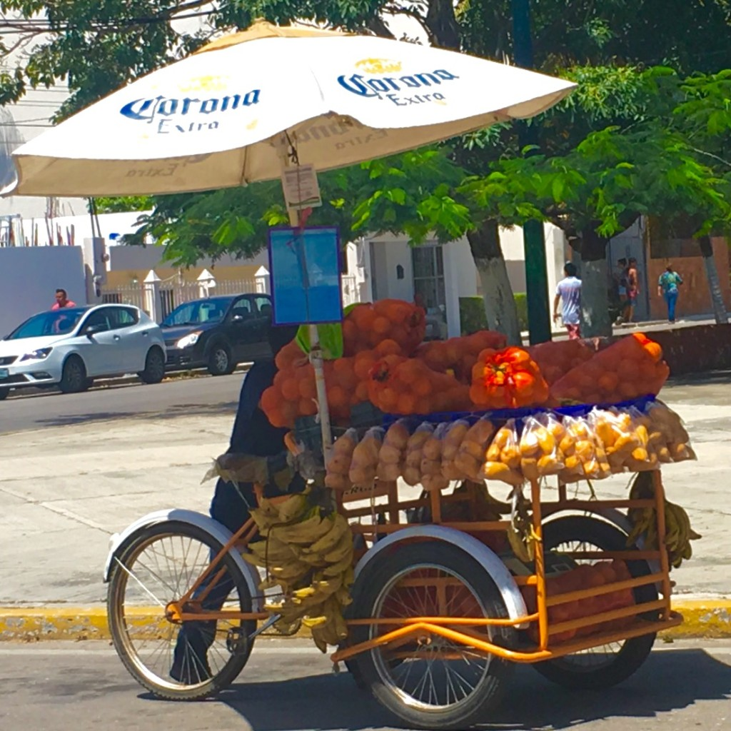A tricycle bike selling fruit in the streets of Playa.