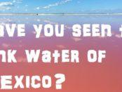 Las Coloradas Mexico