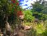 Mystikal Wanders Private tours Tulum