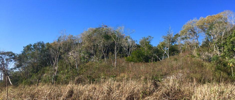 Yaxunah Mayan ruins