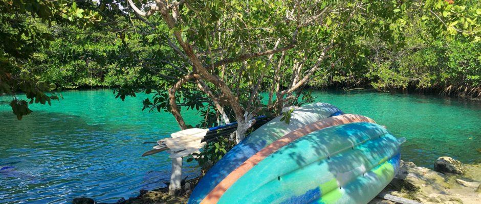 Cenotes close to Playa Del Carmen to visit