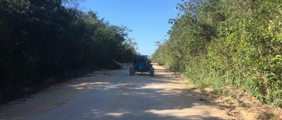 rent buggy jungle tour Playa Del Carmen