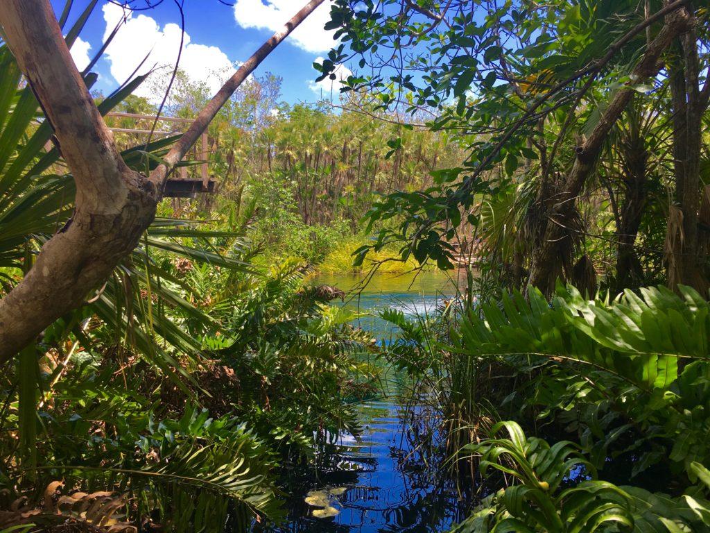 Cenote Cristal Tulum