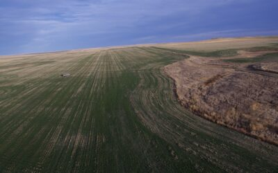 Haakon County Farmland