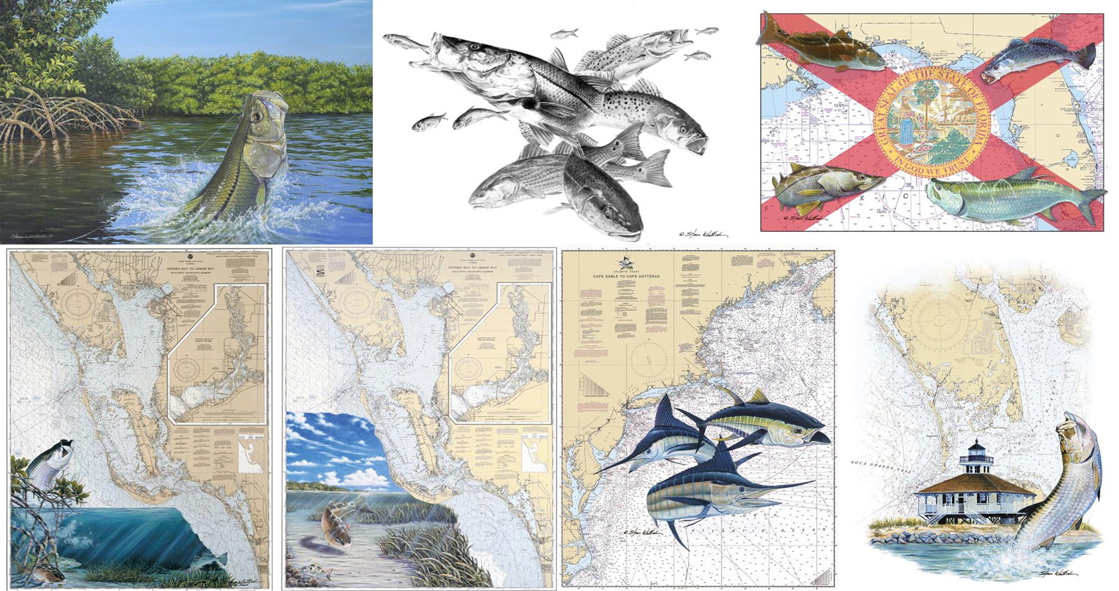 Game fish chart art paintings with snook and tarpon in Florida