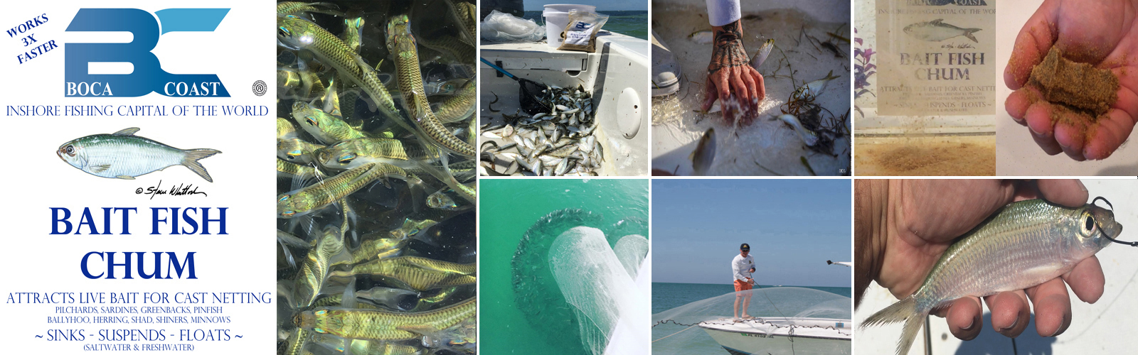 Bait fish chum for cast netting