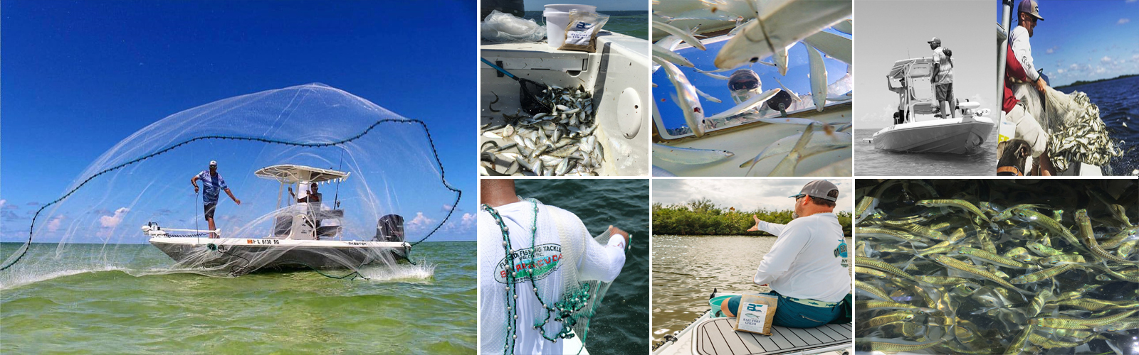 Barracuda brand is the best cast net for the money