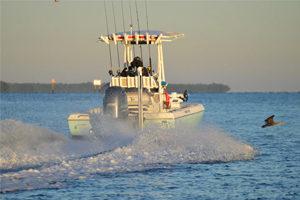 Cape Coral Redfish Charter