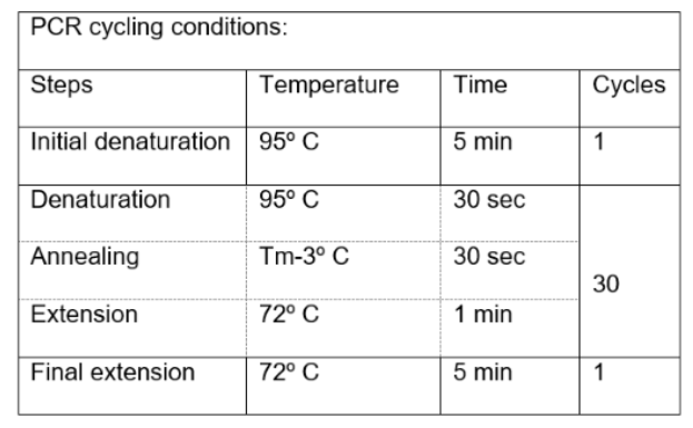 T7 Endonuclease Thermocycling Conditions