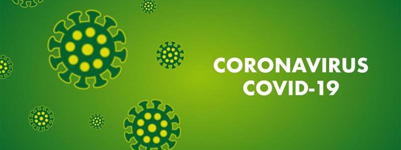 cCOVID19 RT-qPCR