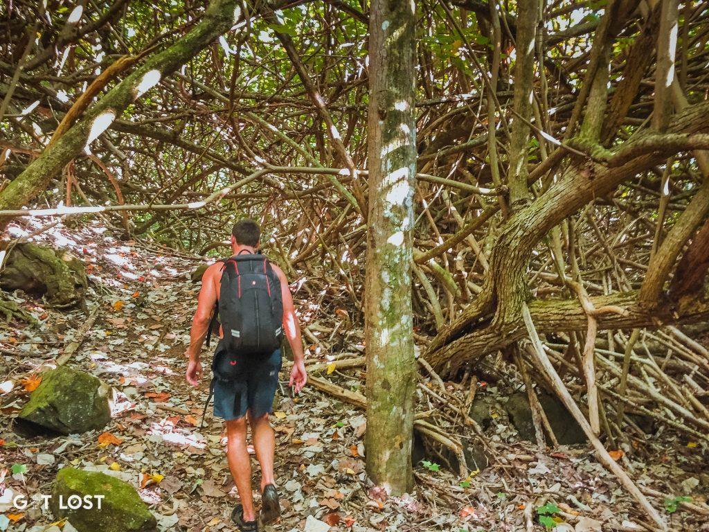 kalalau-trail-5