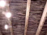 Ocotillo Latilla Ceiling
