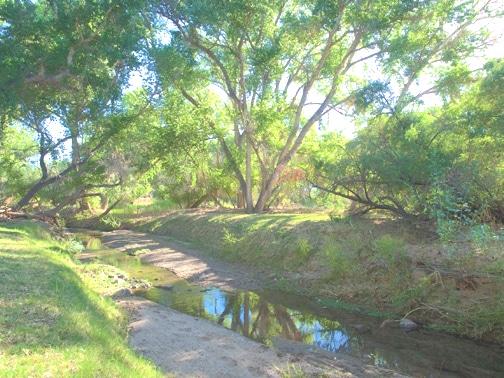 Santa Cruz River - Lawrence Beck