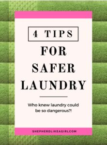 DIY Sheep Crafts   4 Tips for Safer Laundry   Shepherd Like A Girl