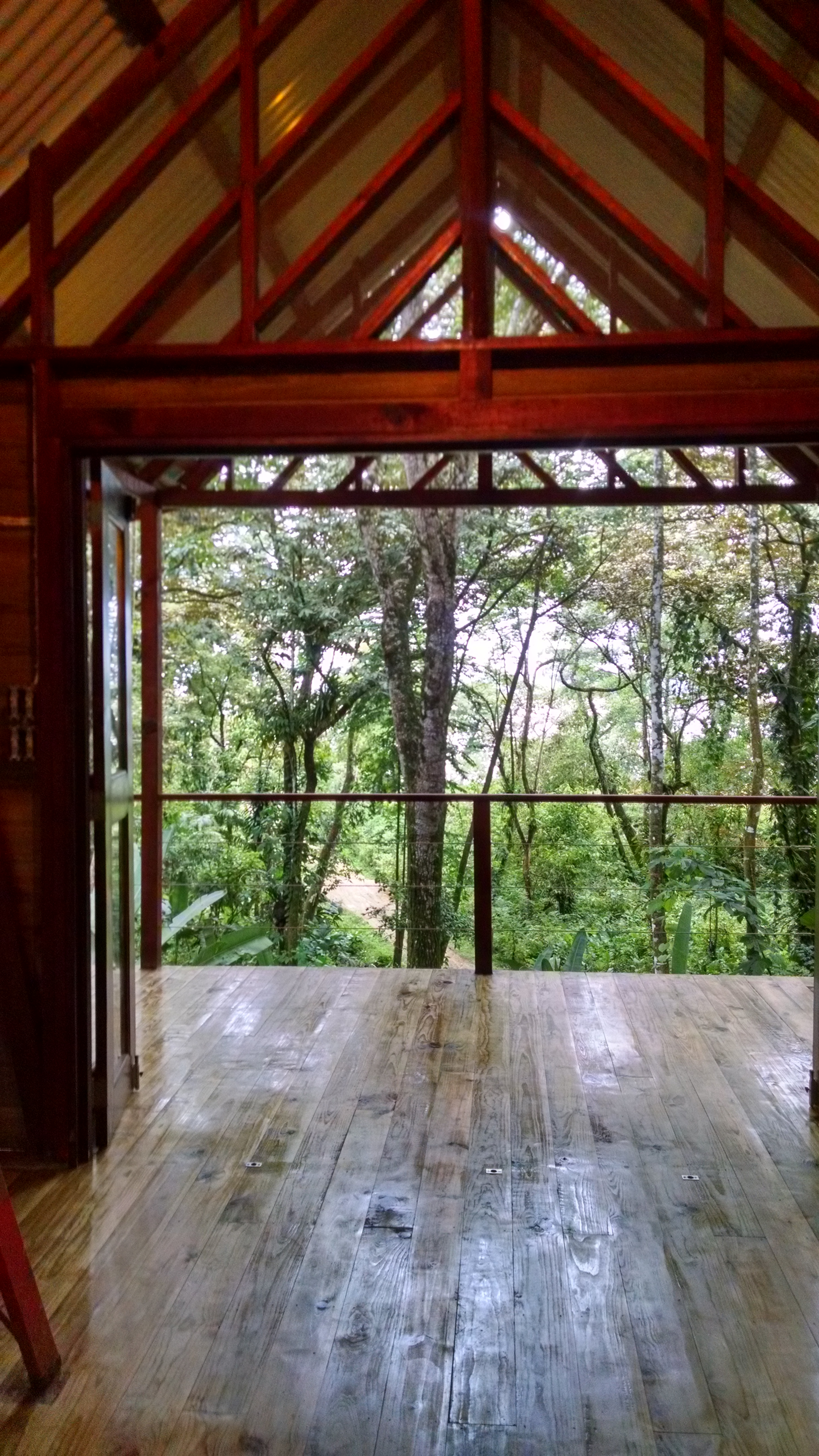 Photo of Tree Cabin view from the bedroom.