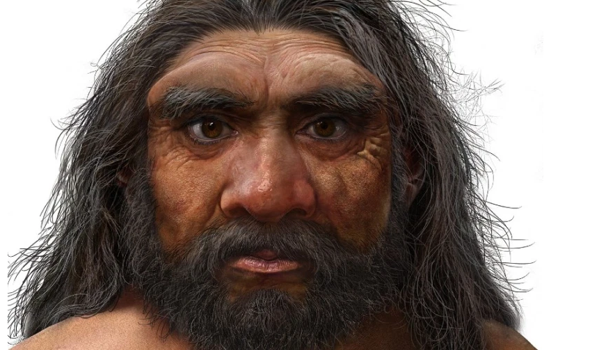 'Dragon Man' skull discovered in China could be new human species