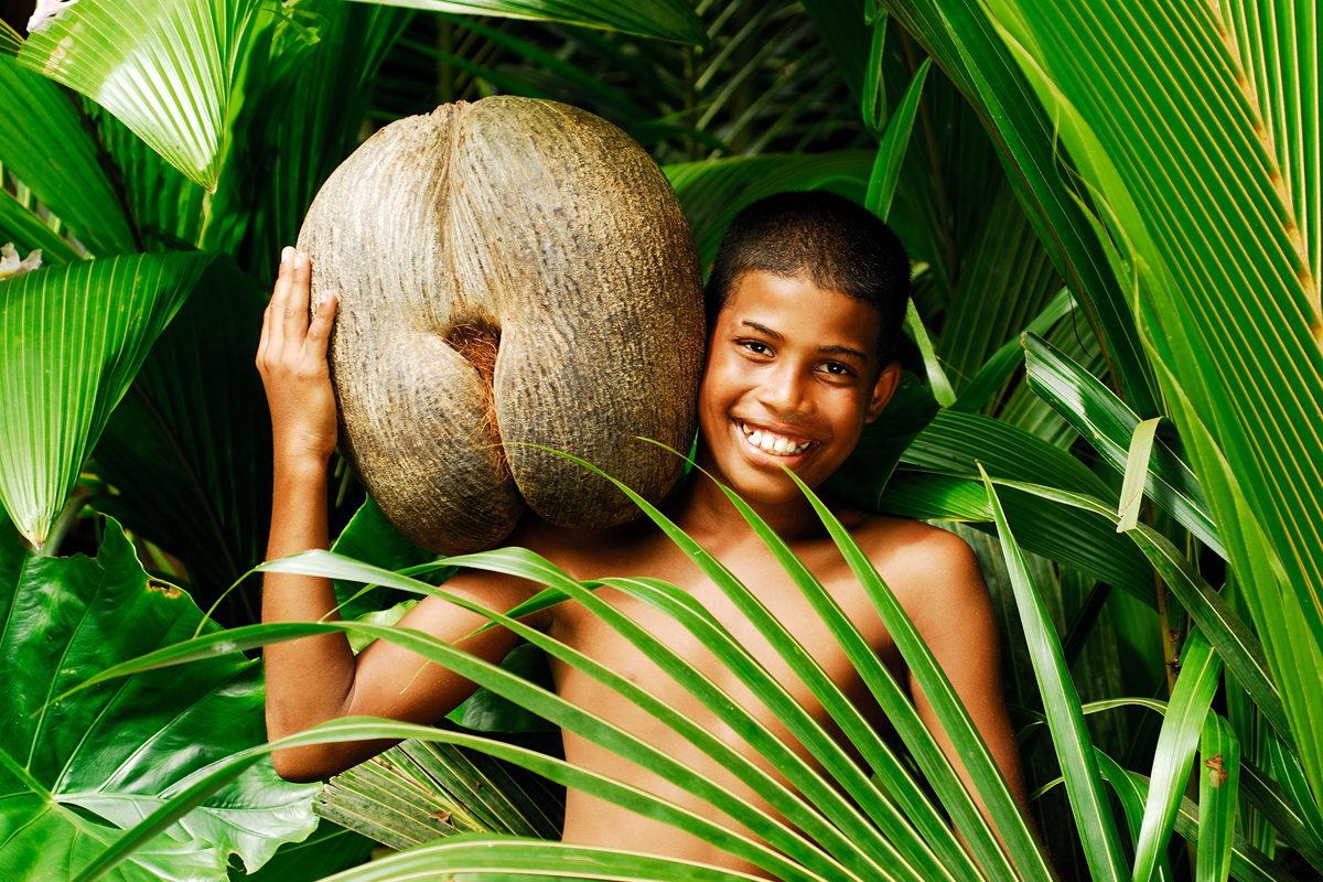 Seychelles _ Coco de Mer