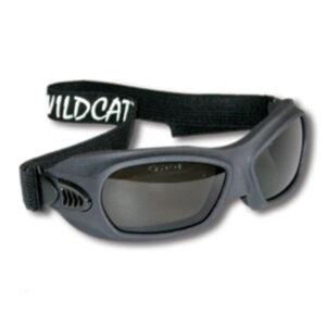 Wildcat Wildland Goggle