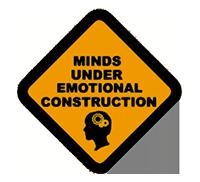 Minds under emotional construction, Emotional Intelligence Institute (EII)